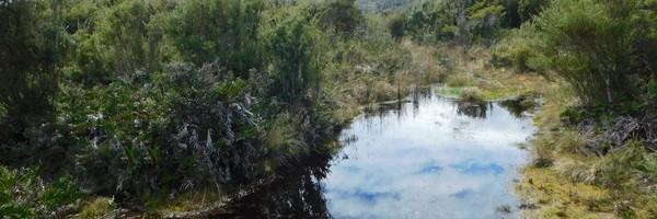 Petite rando dans le Parc national deChiloé