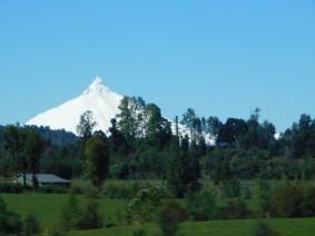 Bus Punta Arenas / Chiloé, en vue d'Osorno