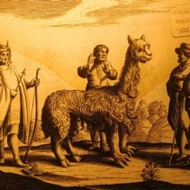 Musée régional d'Ancud, reproduction d'une image de 1646