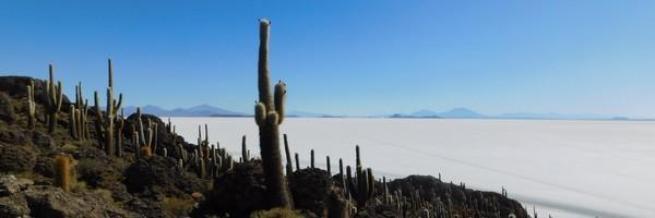 Le Salar d'Uyuni, une mer desel