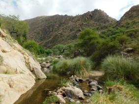 Cafayate, balade au Rio Colorado