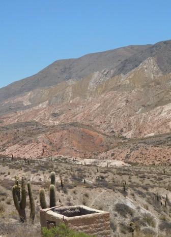 Sur la Ruta 33, des cactus par milliers !