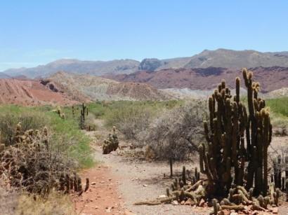 A l'ouest de Tupiza, excursion vers la Puerta del Diablo et le canon del Inca