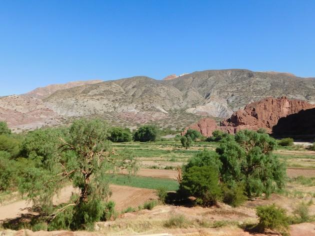 Au sud de Tupiza, excursion vers le Canon del Duende et le rio de Toroyoj, village avec plantations