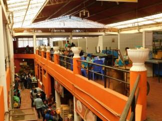Tupiza, centre-ville, marché central