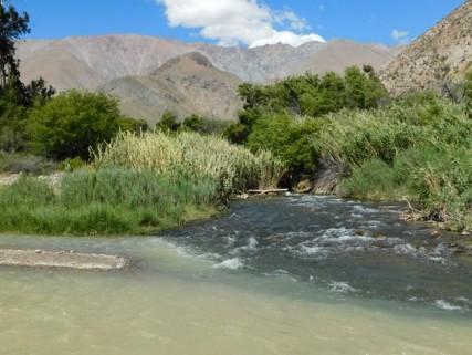 Vallée de l'Elqui, confluent des deux rios