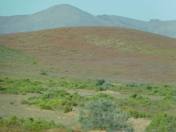 Route La Serena / Atacama