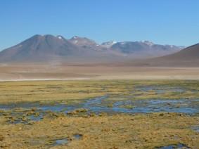 Zone de marais au pied du volcan Putana
