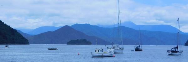 A Picton, aquarium, musée et balades àpied
