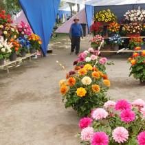 Santiago, feria artisanale Plaza Bustamente (occasionnelle durant une dizaine de jours), fleurs de bois