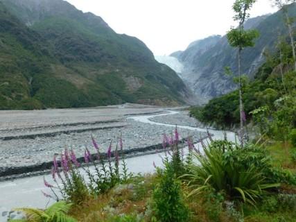 Franz Josef Glacier, vue du même endroit que la photo prise au début du siècle dernier...