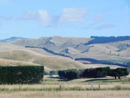 Route n°1, entre Christchurch et Kaikoura