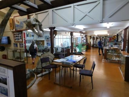 Musée de Picton