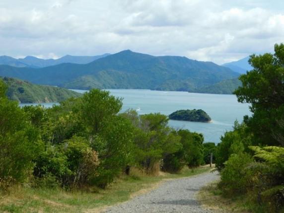 Picton, balade à pied vers le Snout
