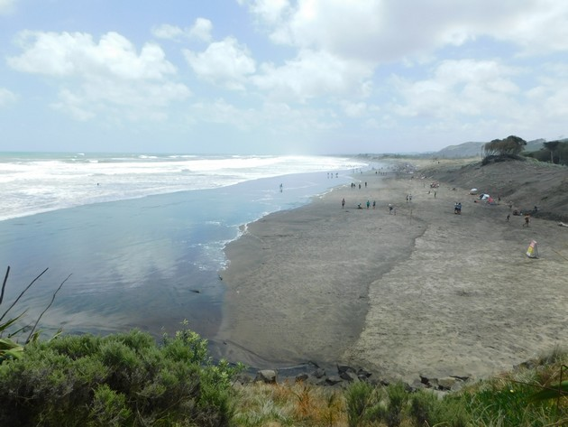 NZ - 405