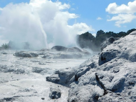 Rotorua - Parc Te Puia