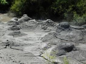 Rotorua - Parc Te Puia - Bain de boue