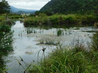 Waimangu Volcanic Valley -Lac Rotomahana