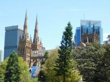 Sydney - Cathédrale Sainte Mary