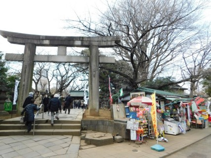 Tokyo - Parc de Uneo - Notre gargote !