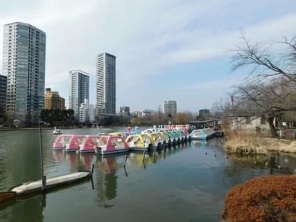 Tokyo - Parc de Uneo - Etang Shinobazu