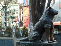 Tokyo - Shibuya - Hachiko, la statue du chien qui revint chercher son maitre chaque soir ici après sa mort, et cela pendant 10 ans...