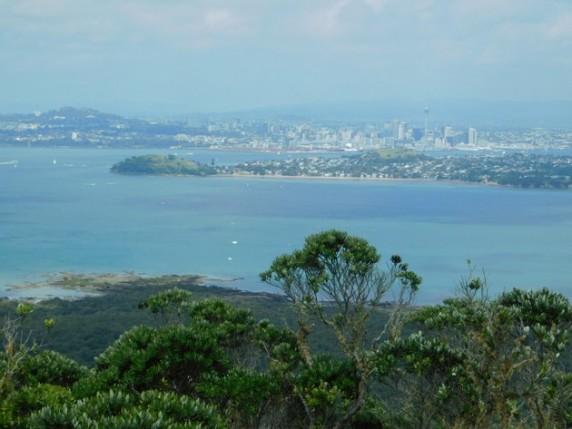 Ile de Rangitoto - Vue sur Auckland
