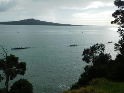 Plage de Narrow Neck