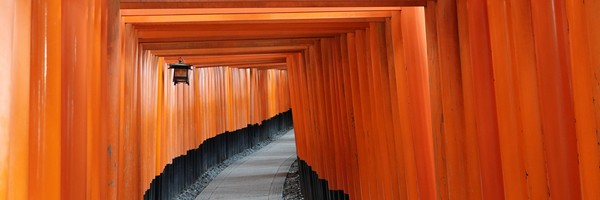 Les milliers de torii du sanctuaire Fushimi InariTaisha