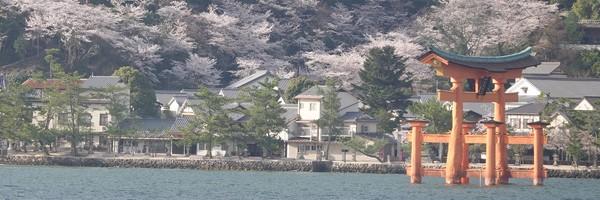 Rando sur l'île de Miyajima, à quelques encablures d'Hiroshima