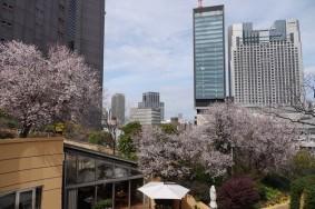 Osaka - Namba Parks