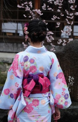 Kyoto - Shibashi-dori