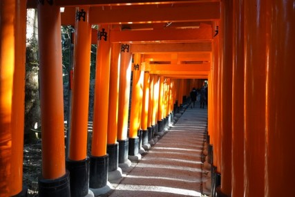 Sanctuaire Fushimi Inari Taisha - Tunnel de torii