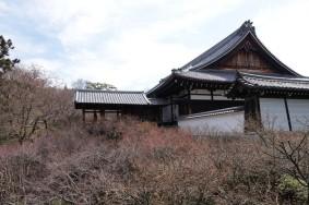 Inari - Temple Tofuku-ji - Jardin