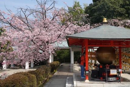 Kyoto - Temple Ryozen Kwanon