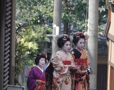 Kyoto - Vieille ville - Maikos (apprenties gueisha)