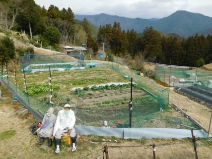 Randonnée sur le Kumano Kodo, de Hosshinmon-oji à Kumano Hongu Taisha - Surprenants épouvantails très réalistes !