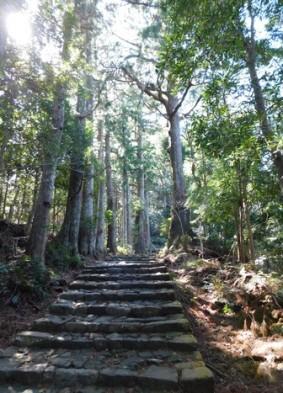 Sanctuaire de Kumano Nachi Taisha - Daimonzaka