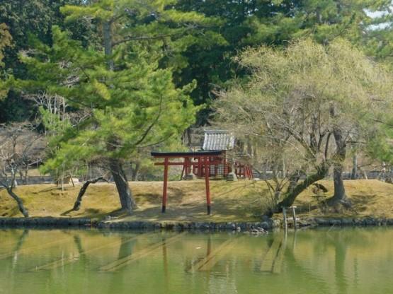 Nara - Vers le temple Toadai-ji