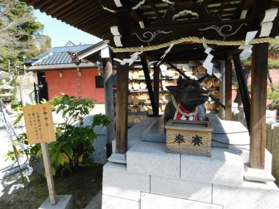 Kobe - Quartier de Kitano - Temple shinto Kitano Tenman-jinja - Le boeuf est à l'honneur !