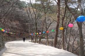 Gyeongju - Grotte de Seokguram - Cheminement piétonnier