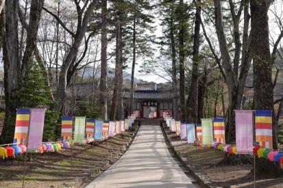Temple Haeinsa - Arrivée