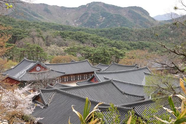 Corée-438