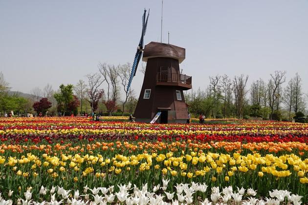 Corée-464