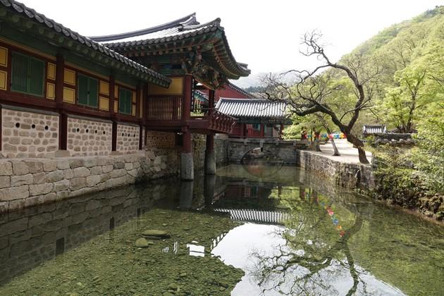 Corée-545