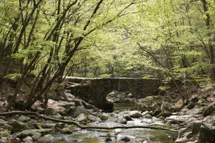 Sur le chemin qui mène au temple Seonamsa