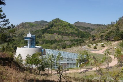 Boseong - Plantation de thé Daehan Dawon - Musée