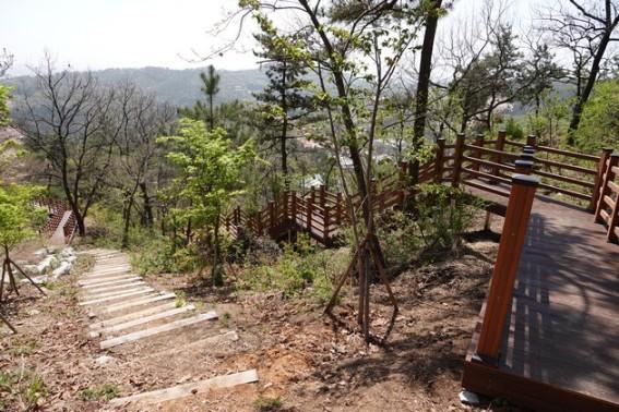 Boseong - Plantation de thé Daehan Dawon - Accès à l'observatoire