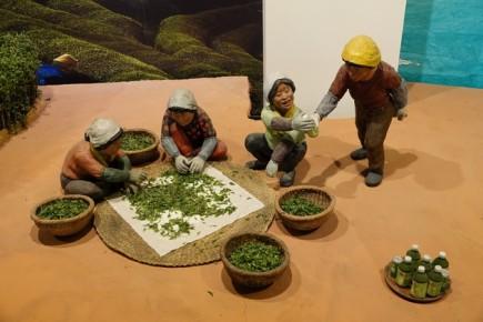 Boseong - Plantation de thé Daehan Dawon - Musée, reconstitution du tri des feuilles de thé