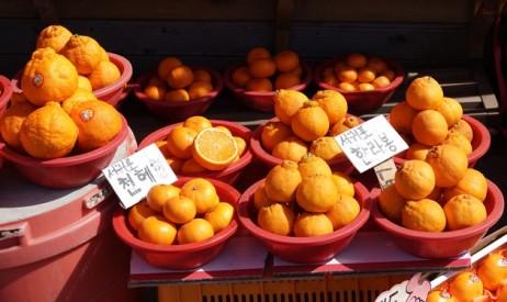 Seongsan Ilchulbong Peak - Vendeur d'oranges au pied du site